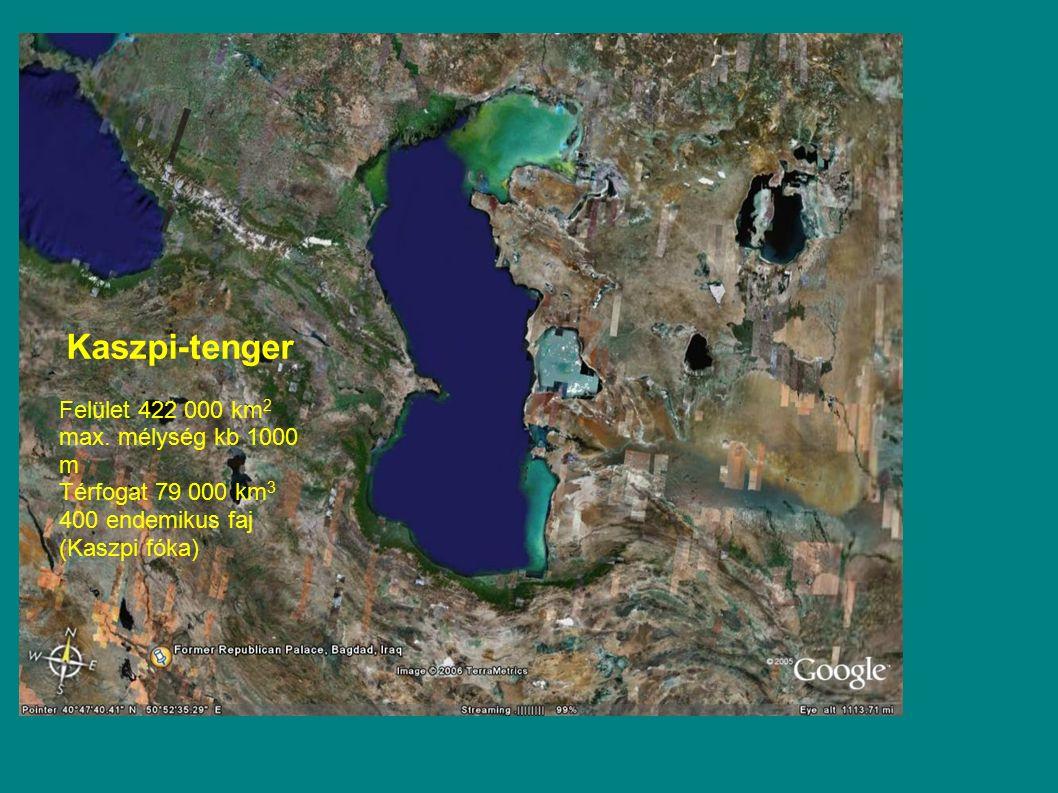 Felület 422 000 km 2 max. mélység kb 1000 m Térfogat 79 000 km 3 400 endemikus faj (Kaszpi fóka) Kaszpi-tenger