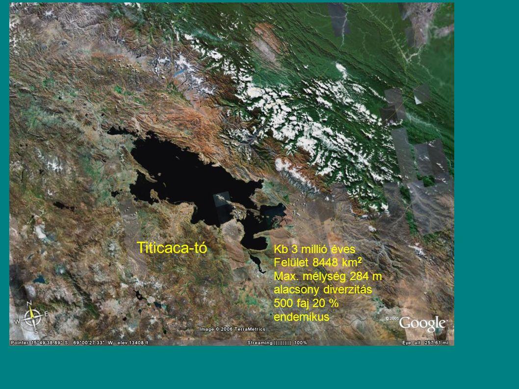 Titicaca-tó Kb 3 millió éves Felület 8448 km 2 Max. mélység 284 m alacsony diverzitás 500 faj 20 % endemikus