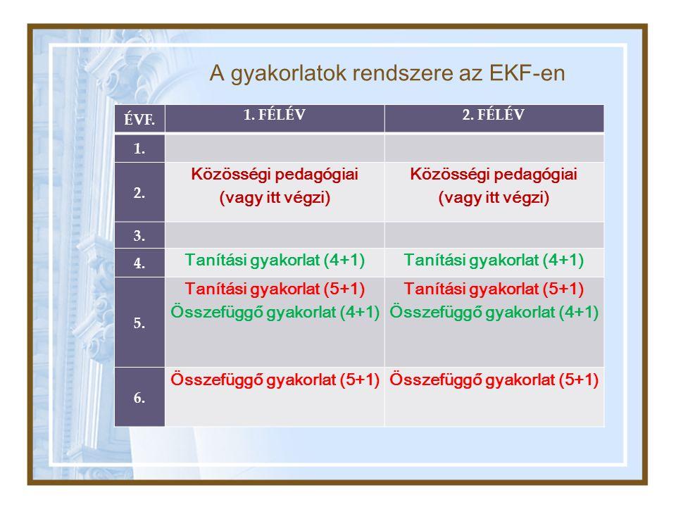 A gyakorlatok rendszere az EKF-en ÉVF. 1. FÉLÉV2.