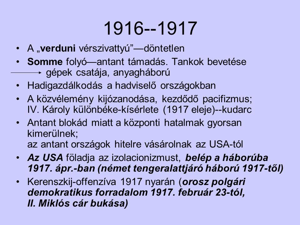 """1916--1917 A """"verduni vérszivattyú —döntetlen Somme folyó—antant támadás."""