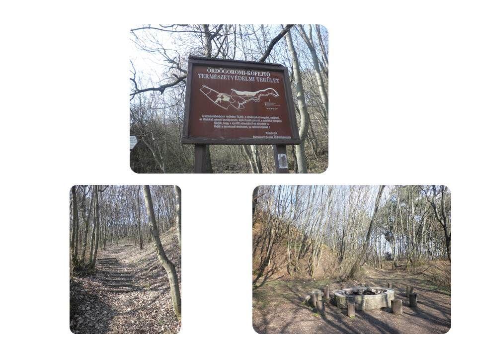 Az Ördög-orom [1] Budapest XII. kerületében, a Magasút városrészben található fontos természeti látványosság. Keskeny, sziklás, meredek oldalú dolomit