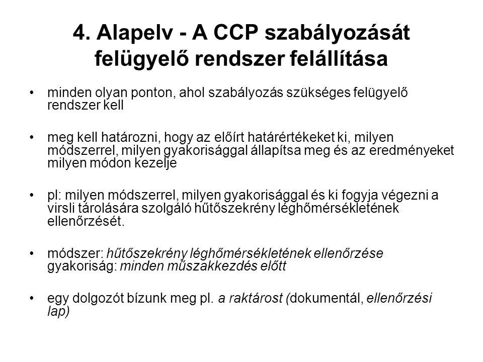 4. Alapelv - A CCP szabályozását felügyelő rendszer felállítása minden olyan ponton, ahol szabályozás szükséges felügyelő rendszer kell meg kell határ