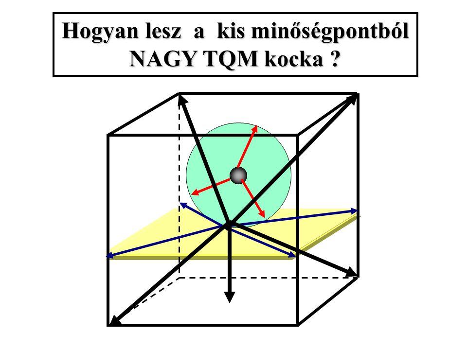 Hogyan lesz a kis minőségpontból NAGY TQM kocka ?