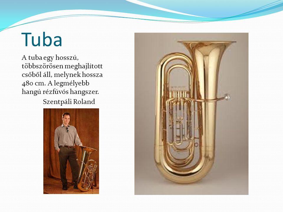 Tuba A tuba egy hosszú, többszörösen meghajlított csőből áll, melynek hossza 480 cm. A legmélyebb hangú rézfúvós hangszer. Szentpáli Roland