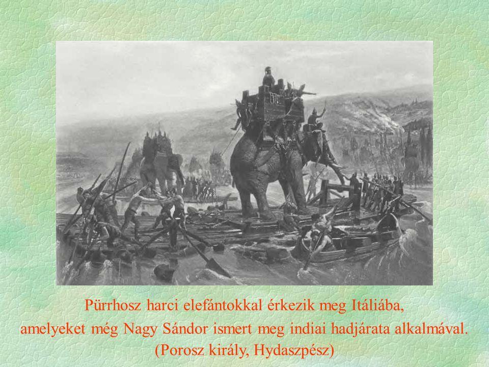Pürrhosz harci elefántokkal érkezik meg Itáliába, amelyeket még Nagy Sándor ismert meg indiai hadjárata alkalmával.