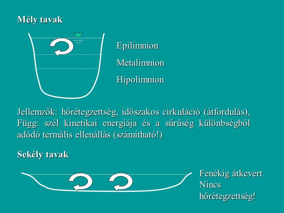 Mély tavak EpilimnionMetalimnionHipolimnion Jellemzők: hőrétegzettség, időszakos cirkuláció (átfordulás), Függ: szél kinetikai energiája és a sűrűség különbségből adódó termális ellenállás (számítható!) Sekély tavak Fenékig átkevert Nincs hőrétegzettség!