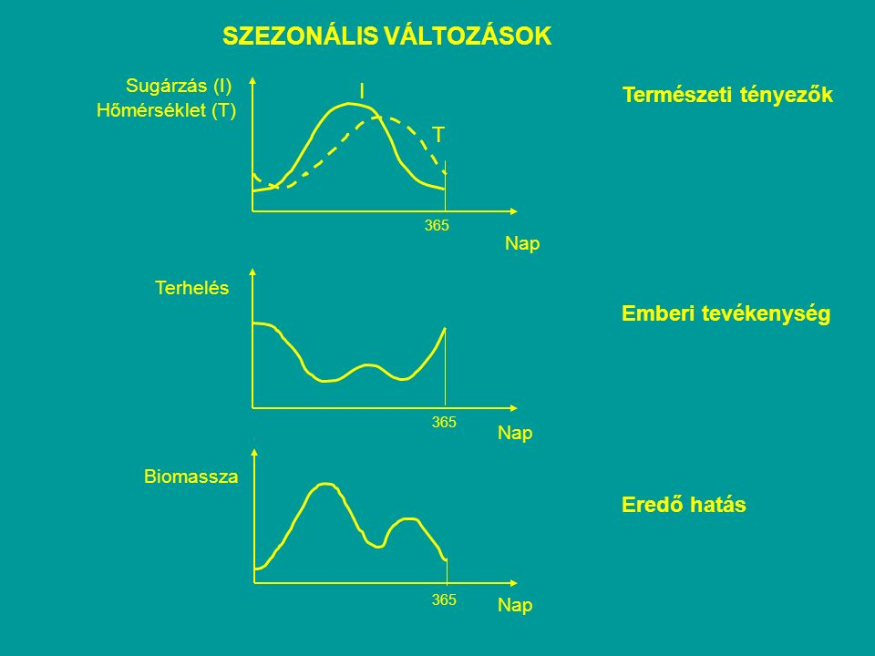 SZEZONÁLIS VÁLTOZÁSOK Természeti tényezők Emberi tevékenység Eredő hatás Nap 365 Sugárzás (I) I T Hőmérséklet (T) Terhelés Nap 365 Nap Biomassza 365