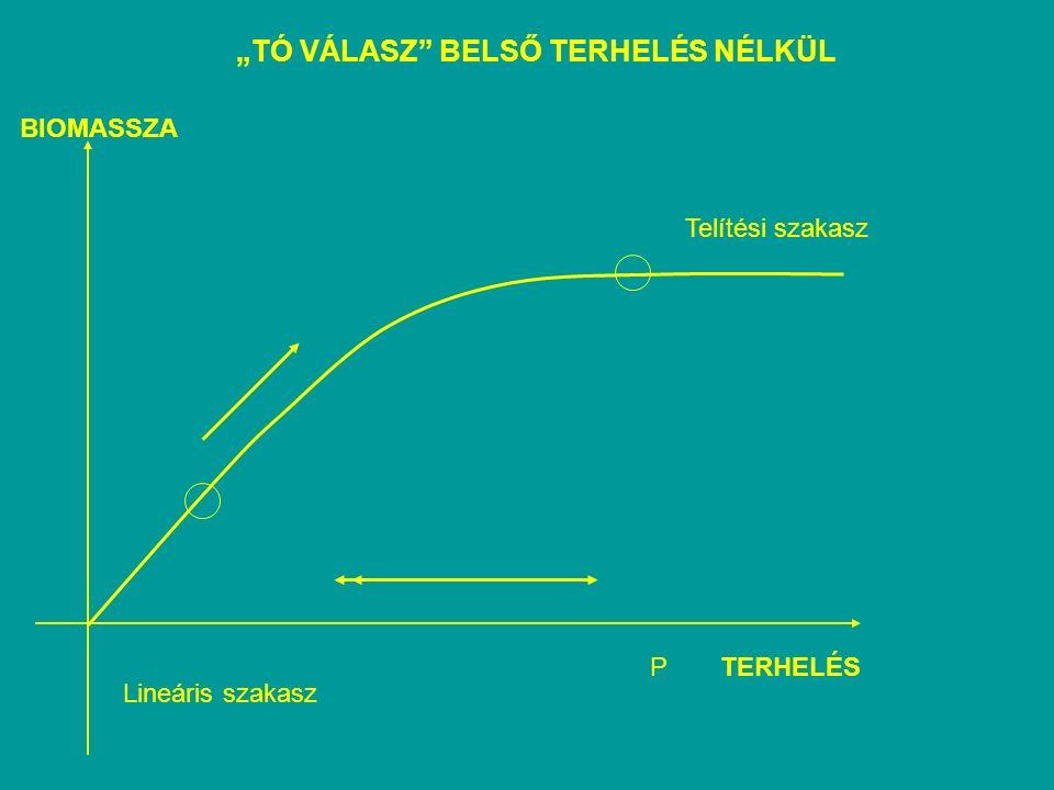 """""""TÓ VÁLASZ BELSŐ TERHELÉS NÉLKÜL Lineáris szakasz Telítési szakasz BIOMASSZA TERHELÉSP"""