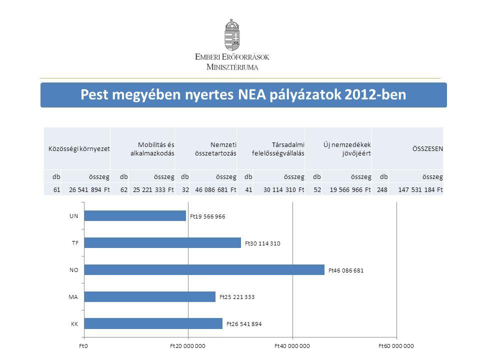 Pest megyében nyertes NEA pályázatok 2012-ben Közösségi környezet Mobilitás és alkalmazkodás Nemzeti összetartozás Társadalmi felelősségvállalás Új ne