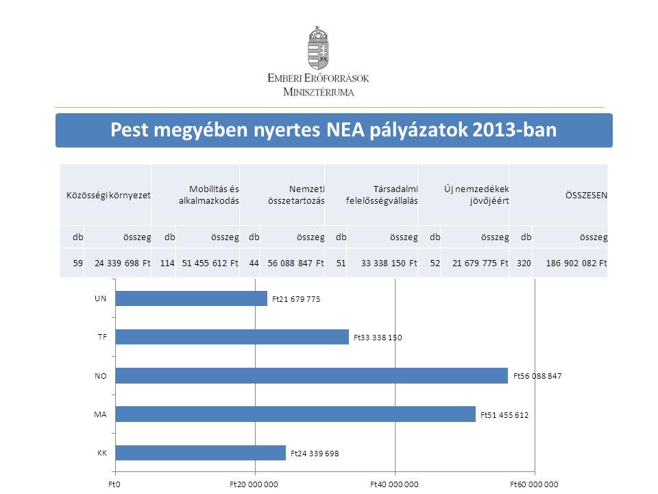 Pest megyében nyertes NEA pályázatok 2013-ban Közösségi környezet Mobilitás és alkalmazkodás Nemzeti összetartozás Társadalmi felelősségvállalás Új ne