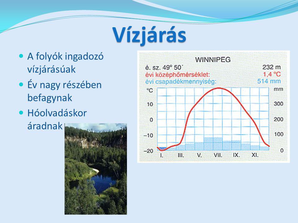 Vízjárás A folyók ingadozó vízjárásúak Év nagy részében befagynak Hóolvadáskor áradnak