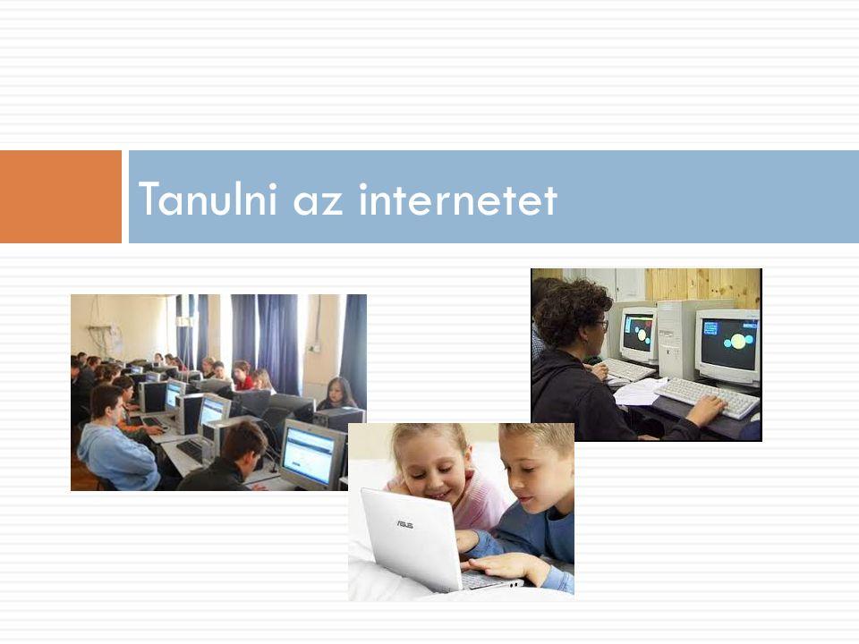 Az internet problémái Manuel Castells alapján  Az internet az ördög műve:  megbízható,  hiteles,  elidegenít,  agresszió,  pornográf és pedofil,  dataszmog.