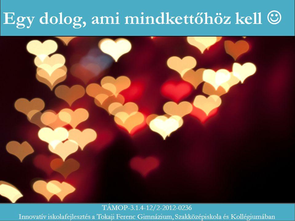 Egy dolog, ami mindkettőhöz kell TÁMOP-3.1.4-12/2-2012-0236 Innovatív iskolafejlesztés a Tokaji Ferenc Gimnázium, Szakközépiskola és Kollégiumában