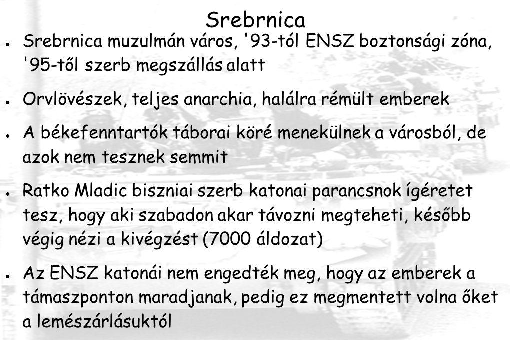 Srebrnica ● Srebrnica muzulmán város, 93-tól ENSZ boztonsági zóna, 95-től szerb megszállás alatt ● Orvlövészek, teljes anarchia, halálra rémült emberek ● A békefenntartók táborai köré menekülnek a városból, de azok nem tesznek semmit ● Ratko Mladic biszniai szerb katonai parancsnok ígéretet tesz, hogy aki szabadon akar távozni megteheti, később végig nézi a kivégzést (7000 áldozat) ● Az ENSZ katonái nem engedték meg, hogy az emberek a támaszponton maradjanak, pedig ez megmentett volna őket a lemészárlásuktól