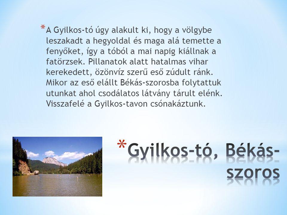 * A Gyilkos-tó úgy alakult ki, hogy a völgybe leszakadt a hegyoldal és maga alá temette a fenyőket, így a tóból a mai napig kiállnak a fatörzsek.