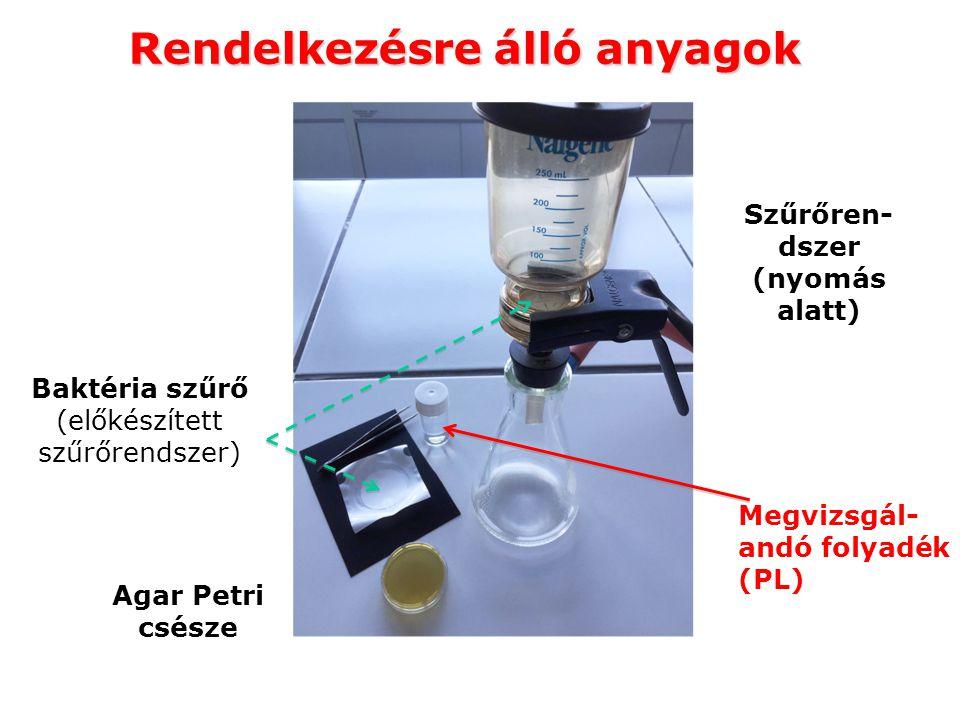 Rendelkezésre álló anyagok Megvizsgál- andó folyadék (PL) Szűrőren- dszer (nyomás alatt) Agar Petri csésze Baktéria szűrő (előkészített szűrőrendszer)