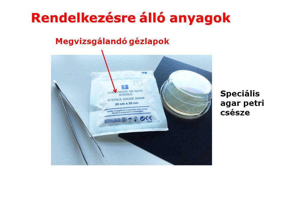 Rendelkezésre álló anyagok Speciális agar petri csésze Megvizsgálandó gézlapok
