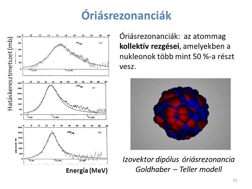 Óriásrezonanciák Izovektor dipólus óriásrezonancia Goldhaber – Teller modell Óriásrezonanciák: az atommag kollektív rezgései, amelyekben a nukleonok t