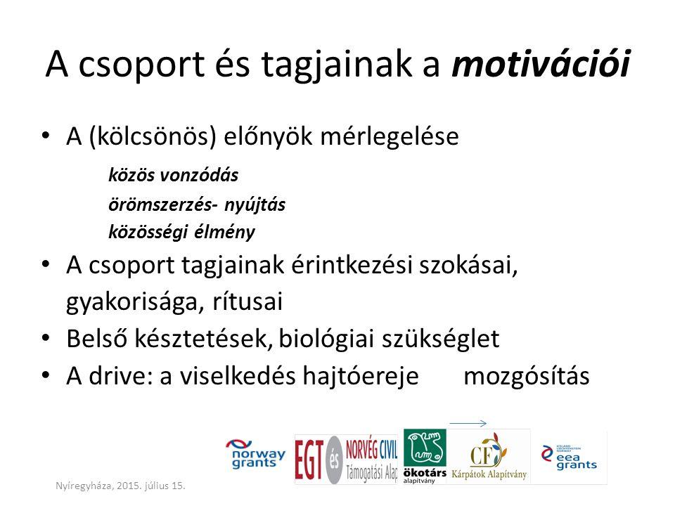 A csoport és tagjainak a motivációi A (kölcsönös) előnyök mérlegelése közös vonzódás örömszerzés- nyújtás közösségi élmény A csoport tagjainak érintke