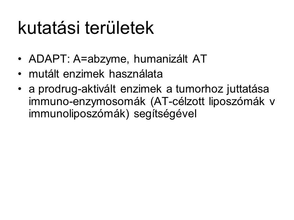 kutatási területek ADAPT: A=abzyme, humanizált AT mutált enzimek használata a prodrug-aktivált enzimek a tumorhoz juttatása immuno-enzymosomák (AT-cél