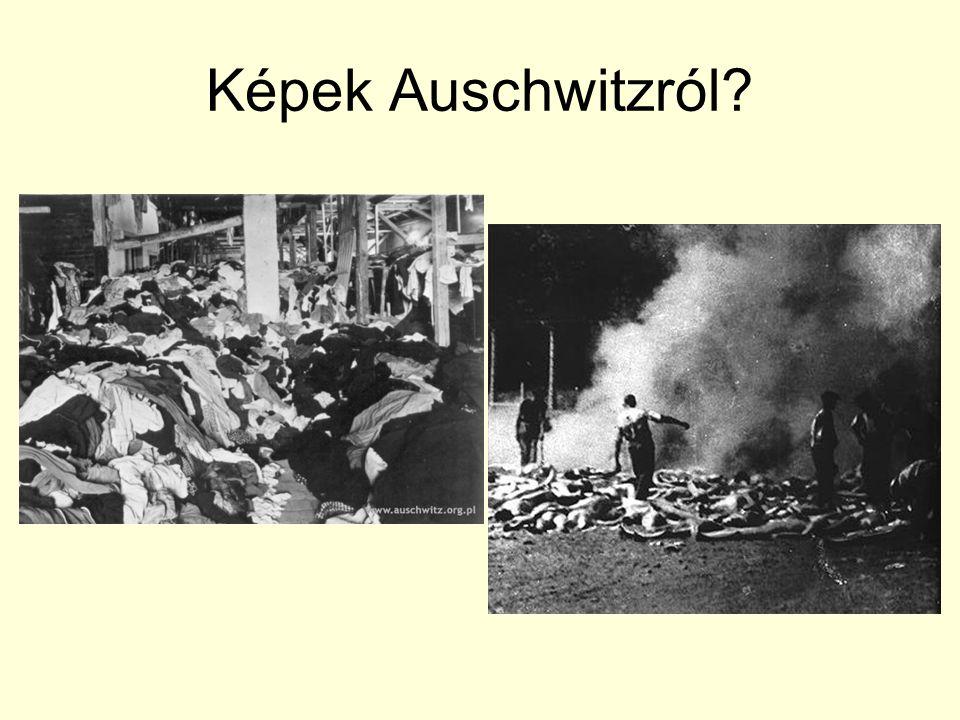 Képek Auschwitzról?