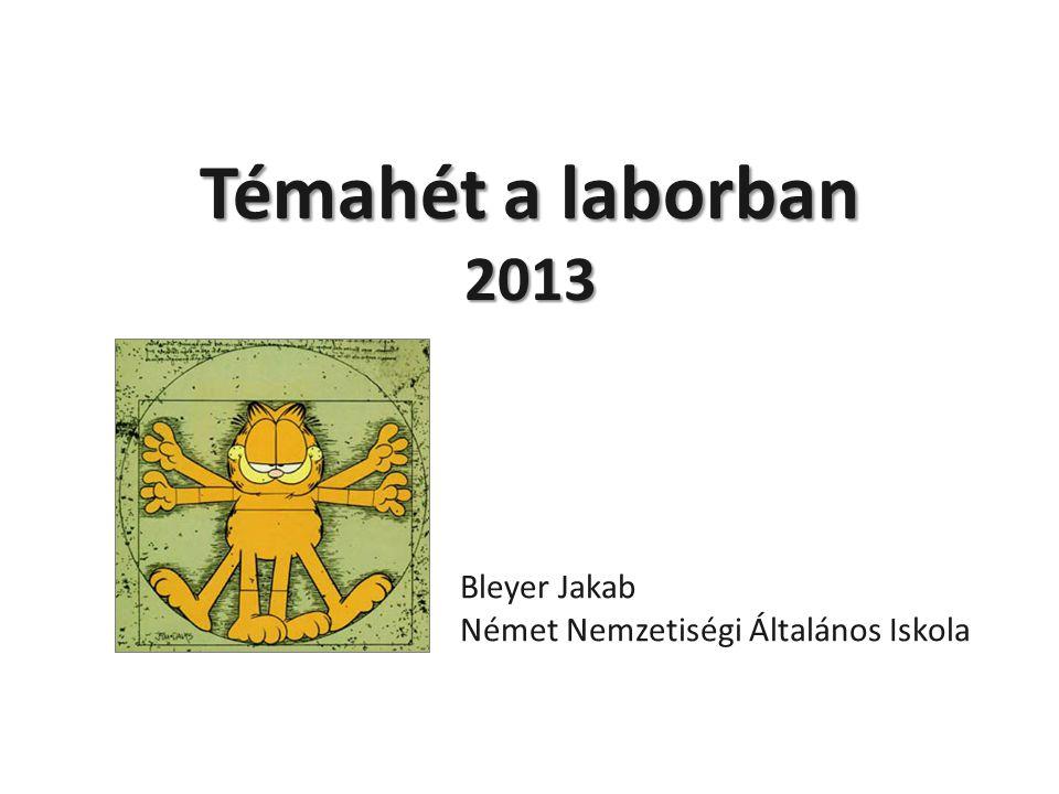 Témahét a laborban 2013 Bleyer Jakab Német Nemzetiségi Általános Iskola