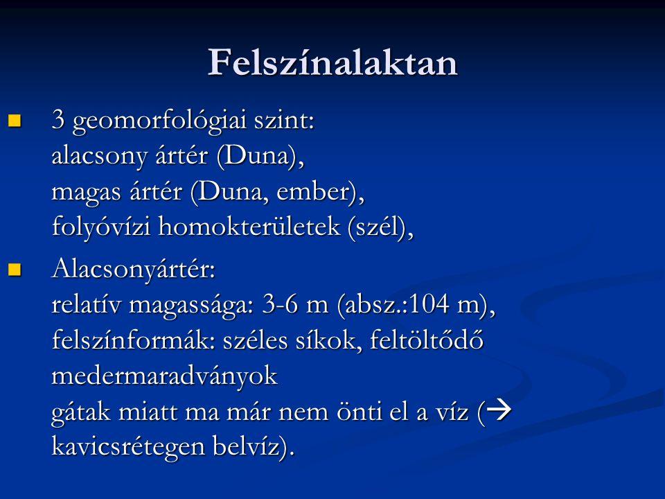 Felszínalaktan 3 geomorfológiai szint: alacsony ártér (Duna), magas ártér (Duna, ember), folyóvízi homokterületek (szél), 3 geomorfológiai szint: alac