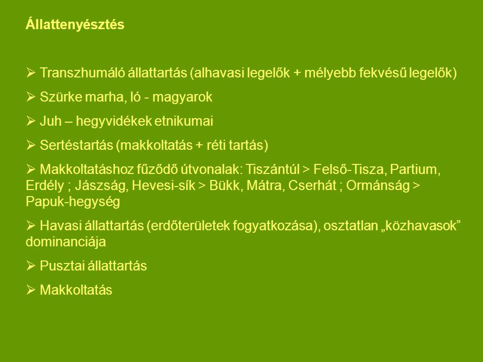 Állattenyésztés  Transzhumáló állattartás (alhavasi legelők + mélyebb fekvésű legelők)  Szürke marha, ló - magyarok  Juh – hegyvidékek etnikumai 