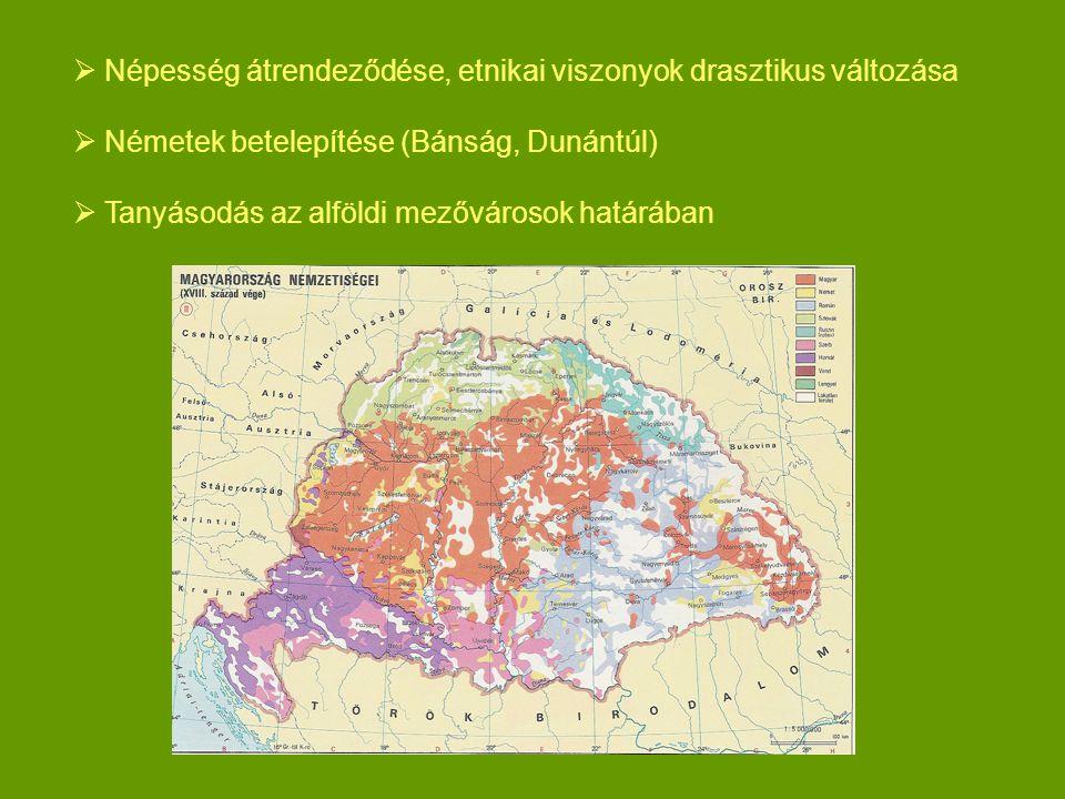  Népesség átrendeződése, etnikai viszonyok drasztikus változása  Németek betelepítése (Bánság, Dunántúl)  Tanyásodás az alföldi mezővárosok határáb