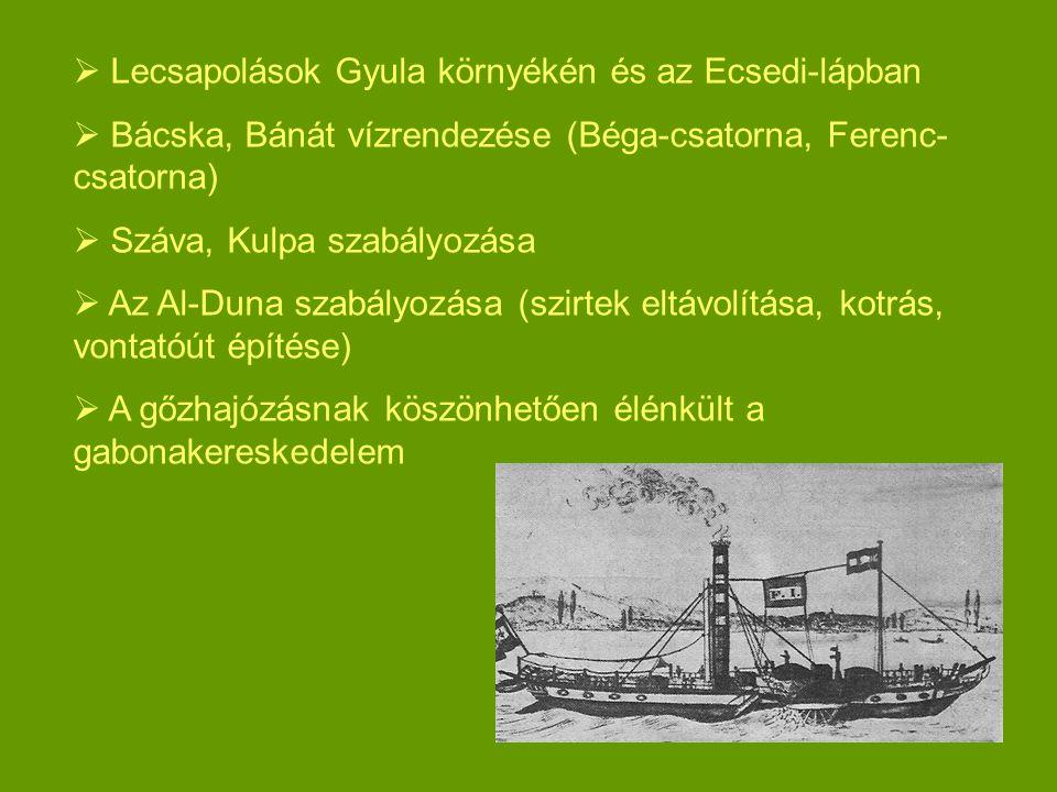  Lecsapolások Gyula környékén és az Ecsedi-lápban  Bácska, Bánát vízrendezése (Béga-csatorna, Ferenc- csatorna)  Száva, Kulpa szabályozása  Az Al-