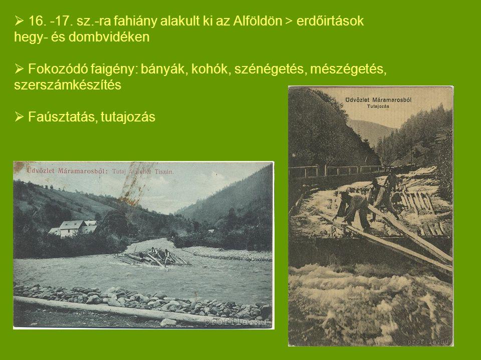  16. -17. sz.-ra fahiány alakult ki az Alföldön > erdőirtások hegy- és dombvidéken  Fokozódó faigény: bányák, kohók, szénégetés, mészégetés, szerszá