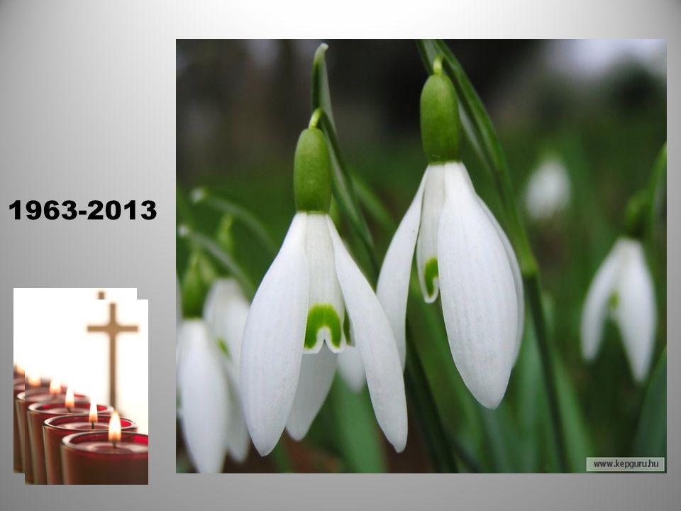 ISTEN Veletek……………Nyugodjatok békében Az Égi katalóguson találkozunk!!! 1963-2013