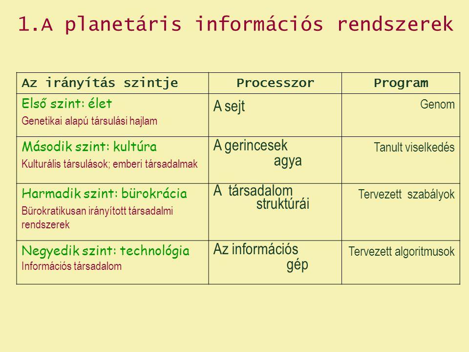 2.3.1 Epigenezis és reprezentáció 2.3.2 Aktivációs mintázatok és szimuláció 2.3.3 Az agy-számítógép metafora 2.3.4 Agy és tudatosság 2.3 Az emberi agy szerveződésének és működésének alapvonásai