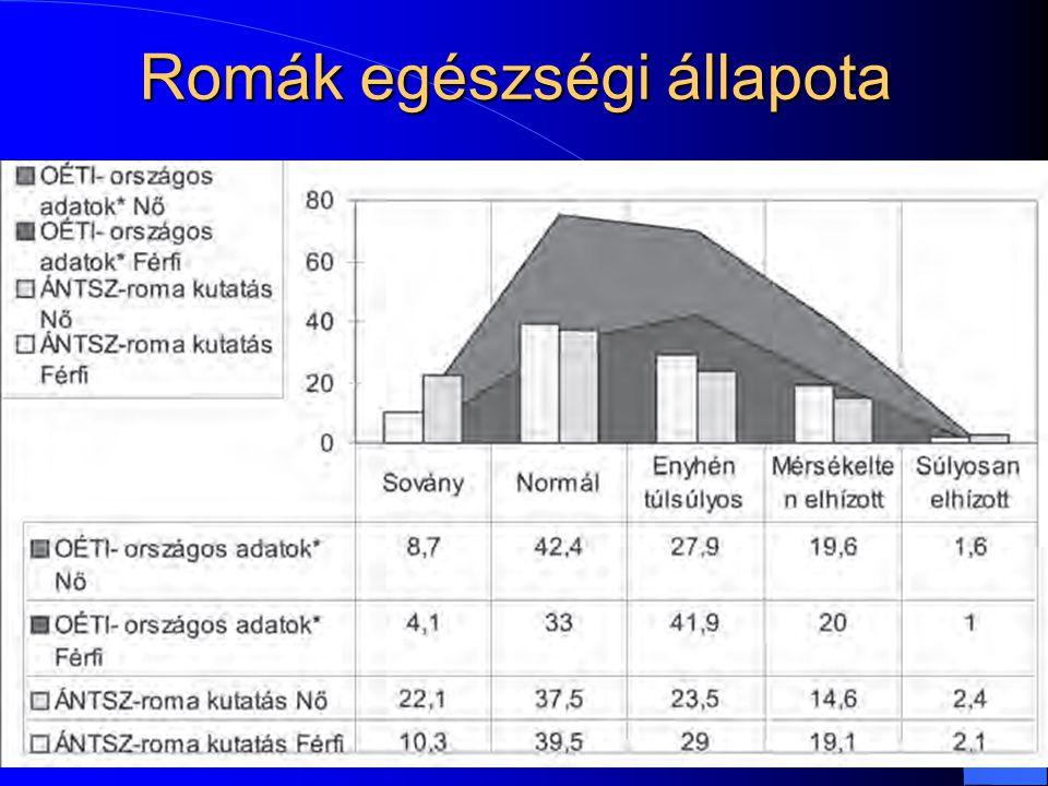 Romák egészségi állapota 15