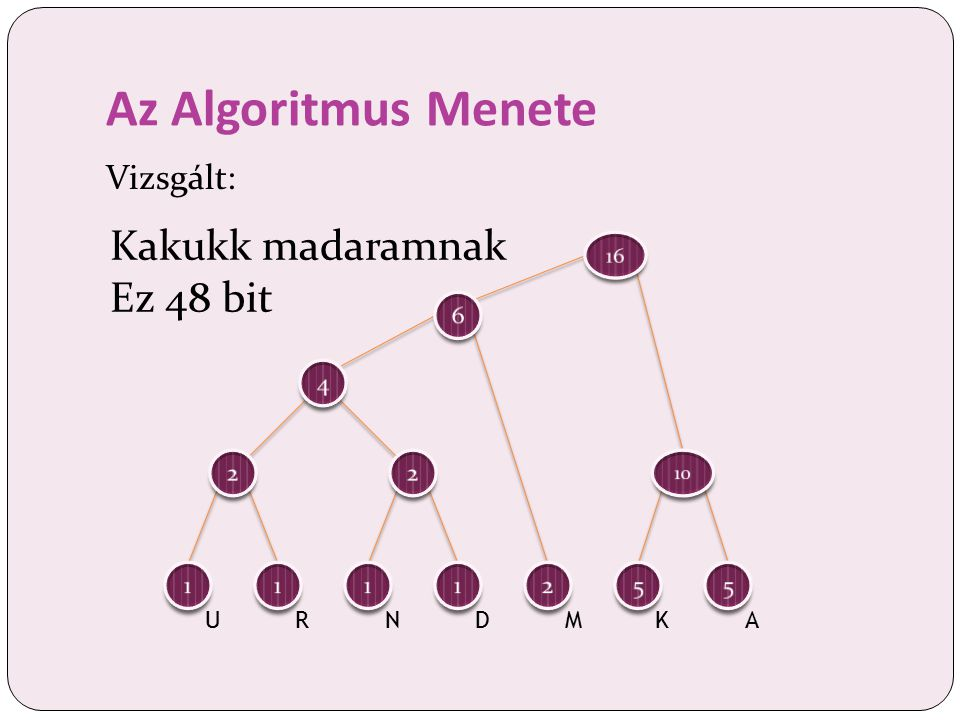 Az Algoritmus Menete Vizsgált: Kakukk madaramnak Ez 48 bit URNDMKA