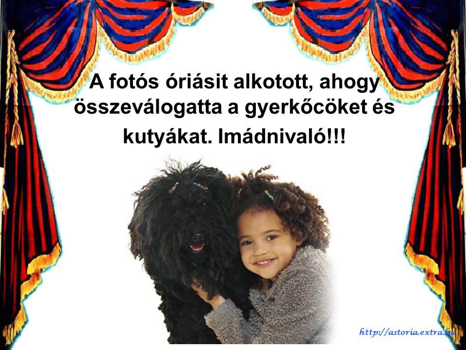 A fotózás nagymestere http://astoria.extra.hu