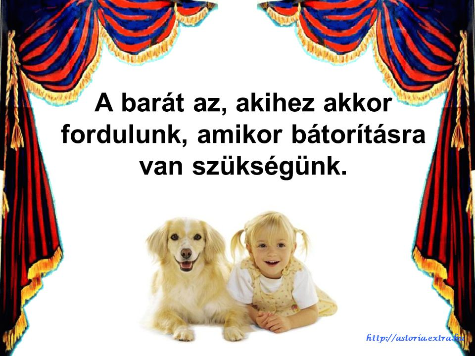 A fotós óriásit alkotott, ahogy összeválogatta a gyerkőcöket és kutyákat. Imádnivaló!!! http://astoria.extra.hu