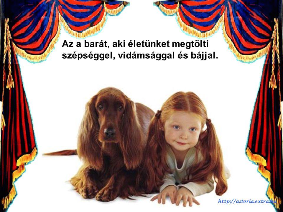 A barát az, akinek a barátságát, mint ajándékot kincsként őrizzük. http://astoria.extra.hu