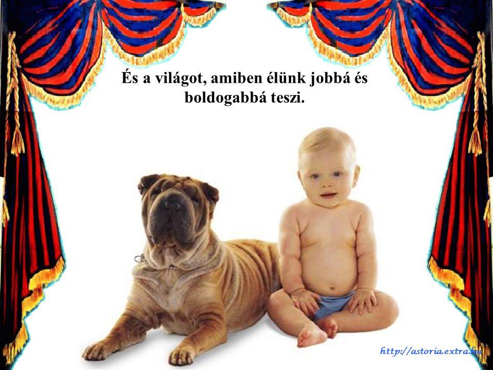 Az a barát, aki életünket megtölti szépséggel, vidámsággal és bájjal. http://astoria.extra.hu