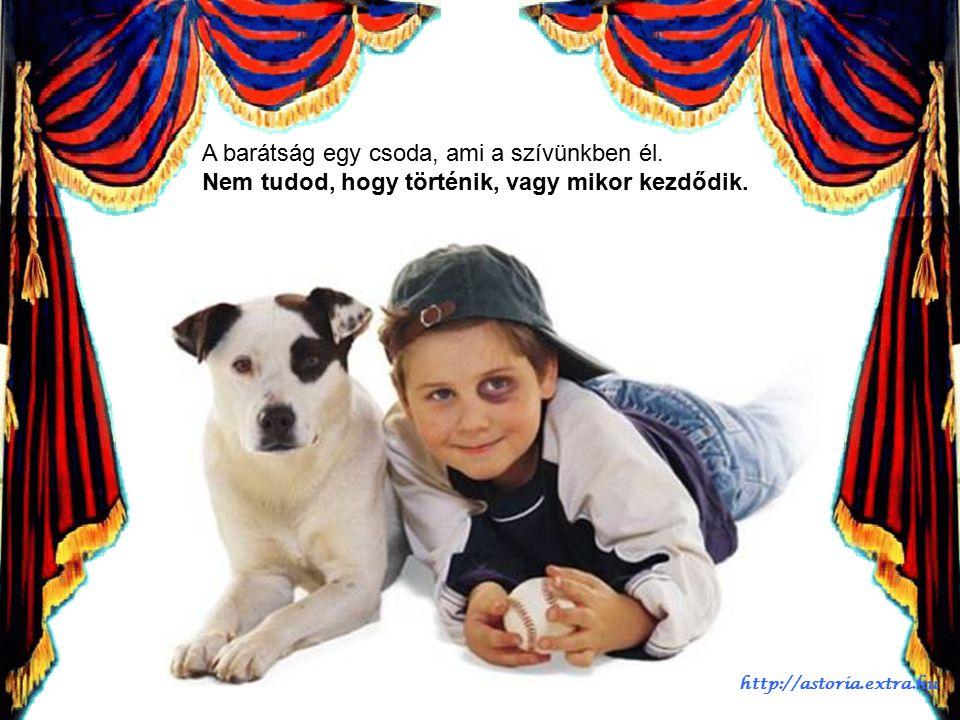 És a világot, amiben élünk jobbá és boldogabbá teszi. http://astoria.extra.hu