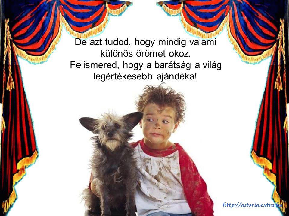 A barátság egy csoda, ami a szívünkben él. Nem tudod, hogy történik, vagy mikor kezdődik. http://astoria.extra.hu