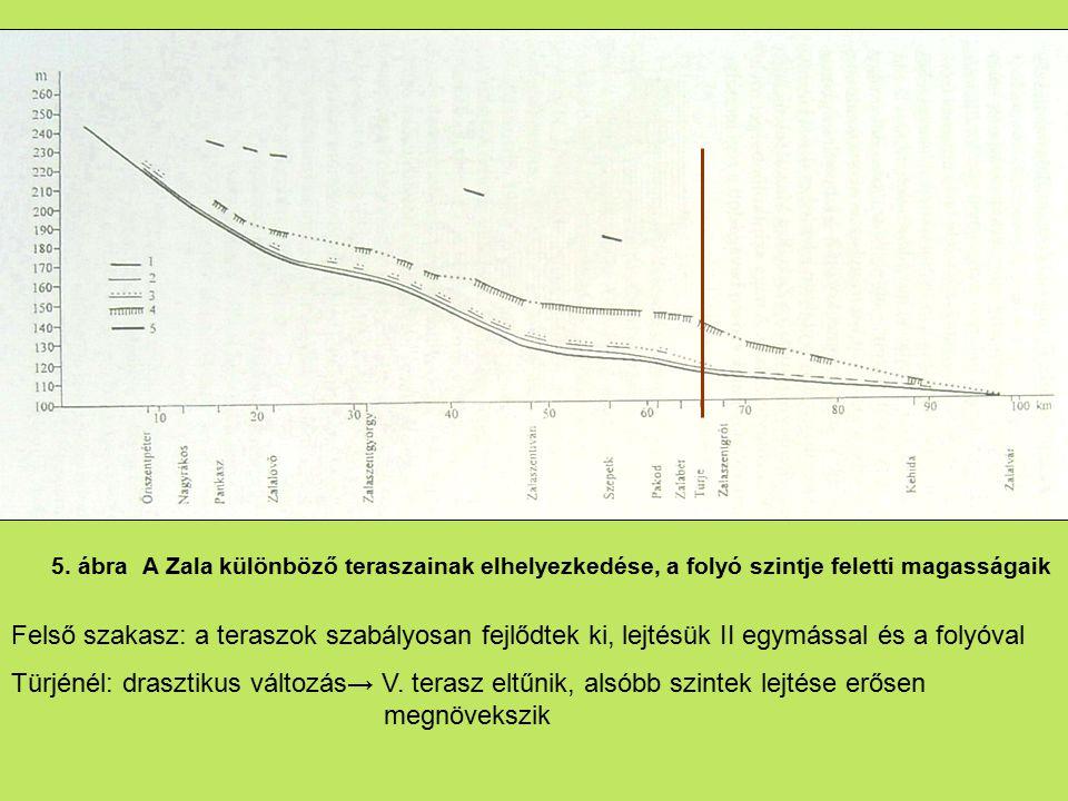 5. ábra A Zala különböző teraszainak elhelyezkedése, a folyó szintje feletti magasságaik Felső szakasz: a teraszok szabályosan fejlődtek ki, lejtésük