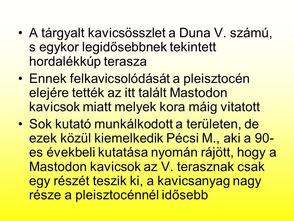 A tárgyalt kavicsösszlet a Duna V. számú, s egykor legidősebbnek tekintett hordalékkúp terasza Ennek felkavicsolódását a pleisztocén elejére tették az