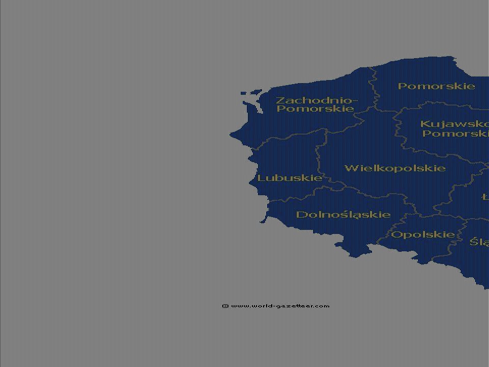 a)a piacgazdasági átmenet nyertesei – Vezető régiók/régióközpontok nagyvárosi agglomerációk – Varsó, Poznan, Wroclaw, Gdansk, Krakkó a gazdaság diverzifikált volt minél differenciáltabb a gazd-i struktúra, annál képzettebb a lakosság és annál magasabb a műszaki színvonal jó a megközelíthetőségük (légi közlekedés) távközlési hálózatuk erős a jól képzett lakosság vállalkozói attitűdje jelentős a K+F tevékenység a recesszión hamar túljutottak nőtt a gazdaság kibocsátása az ipar szerkezete gyorsan átalakult – privatizáció, külföldi működőtőke bevonása a szolgáltató szektor robbanásszerű fejlődése rsz.váltás előtt is vezető szerep, ezen szerepüket meg tudták őrizni