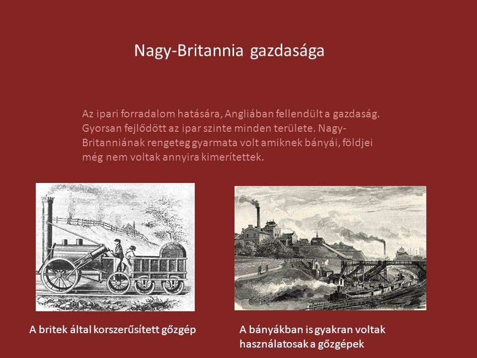 Nagy-Britannia gazdasága Az ipari forradalom hatására, Angliában fellendült a gazdaság. Gyorsan fejlődött az ipar szinte minden területe. Nagy- Britan