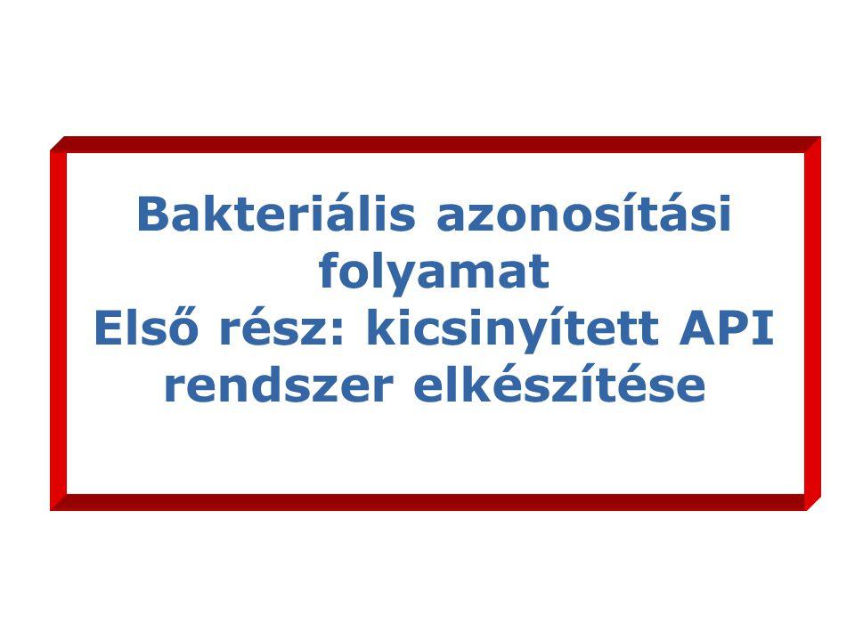 Bakteriális azonosítási folyamat Első rész: kicsinyített API rendszer elkészítése