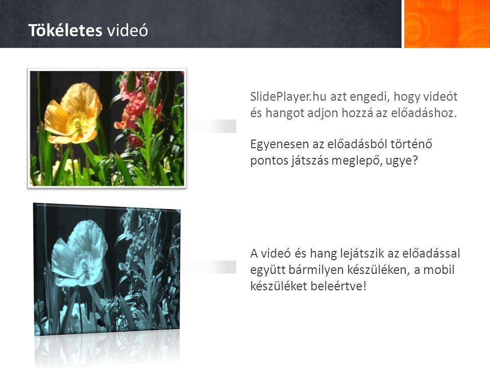 SlidePlayer.hu azt engedi, hogy videót és hangot adjon hozzá az előadáshoz.