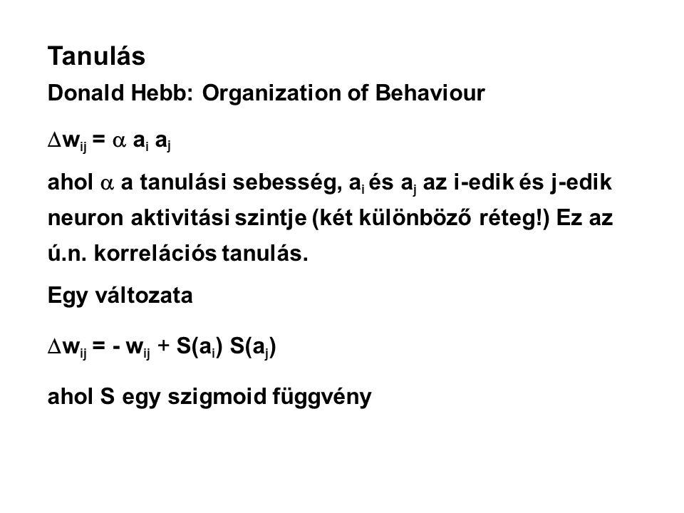 Tanulás Donald Hebb: Organization of Behaviour  w ij =  a i a j ahol  a tanulási sebesség, a i és a j az i-edik és j-edik neuron aktivitási szintje