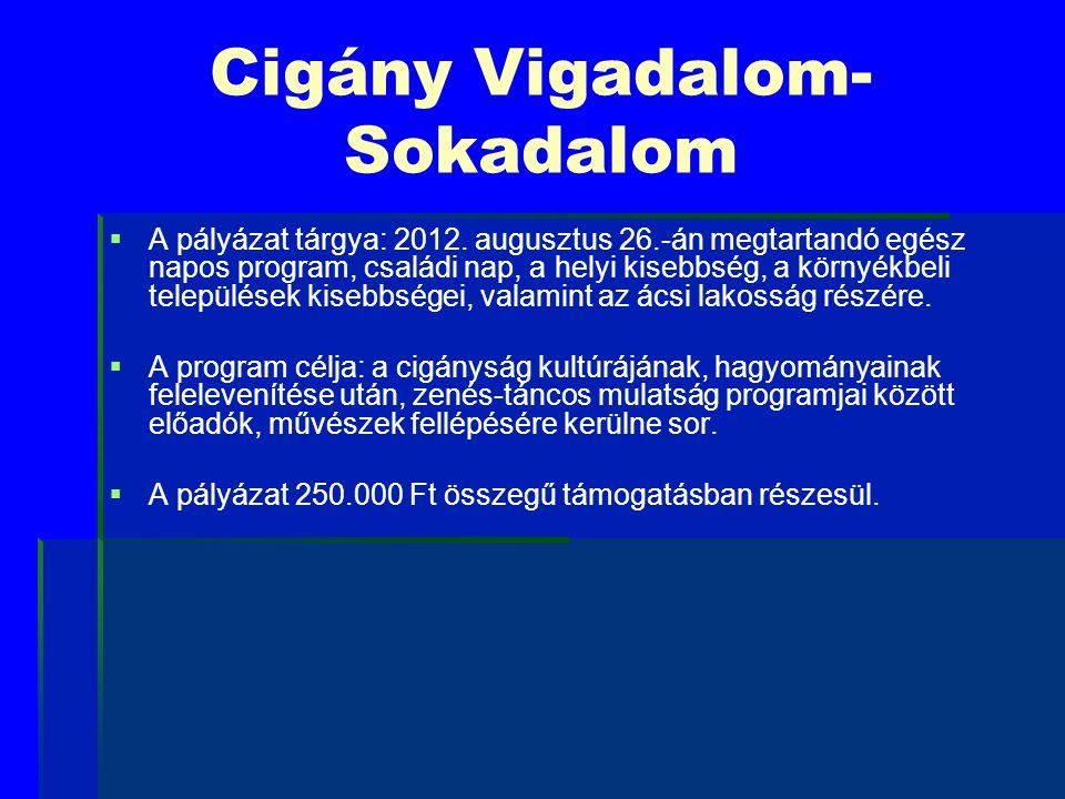 Cigány Vigadalom- Sokadalom   A pályázat tárgya: 2012. augusztus 26.-án megtartandó egész napos program, családi nap, a helyi kisebbség, a környékbe