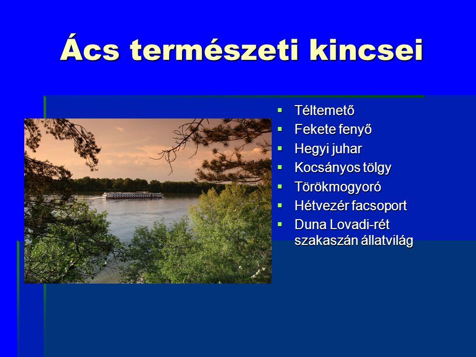 Ács természeti kincsei  Téltemető  Fekete fenyő  Hegyi juhar  Kocsányos tölgy  Törökmogyoró  Hétvezér facsoport  Duna Lovadi-rét szakaszán álla